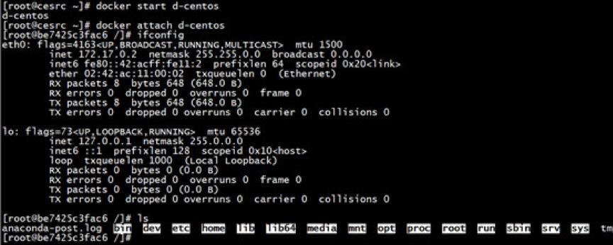 初学Docker容器网络不得不看的学习笔记